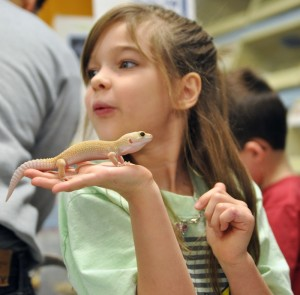 Gallery: Environmental Education Showcase