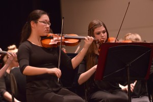 Gallery: Orchestra Concert