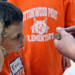 A Cottonwood Point student takes a close look at the leopard gecko. Photo by Kaitlyn Stratman