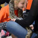 A student leans forward as the heavy boa constrictor hangs on her neck. Photo by Kaitlyn Stratman